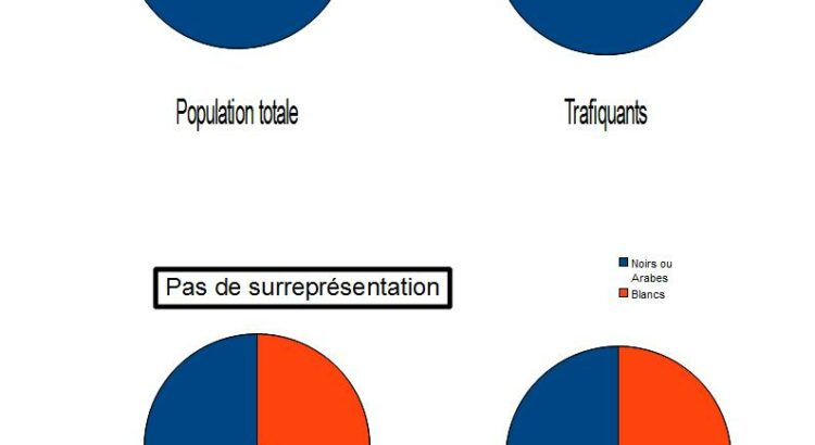 CorteX_Chiffres_de_la_delinquance_Diagrammes_Surrepresentation
