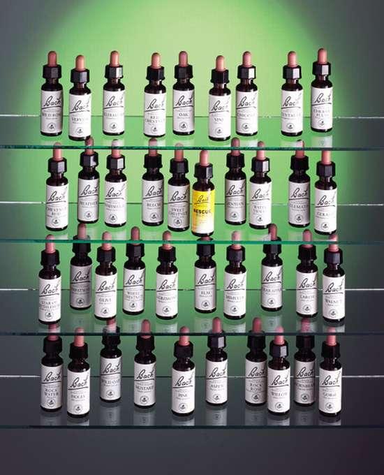 """Résultat de recherche d'images pour """"elixir floraux de bach"""""""