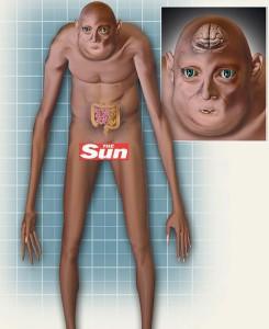 CorteX_Evolution_Human_The_Sun_6.10.2012