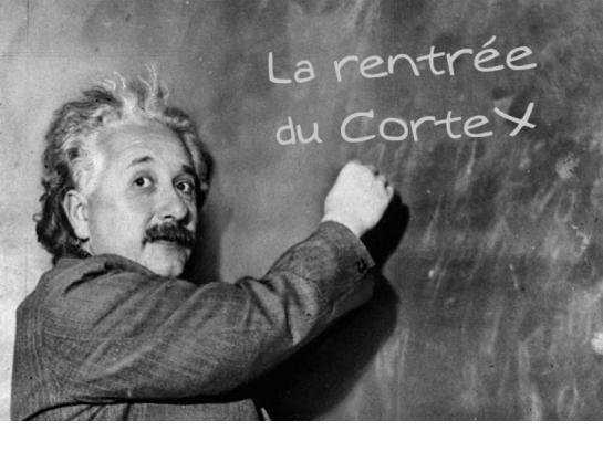RentreeCorteX