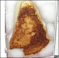 CorteX_Toast_Vierge