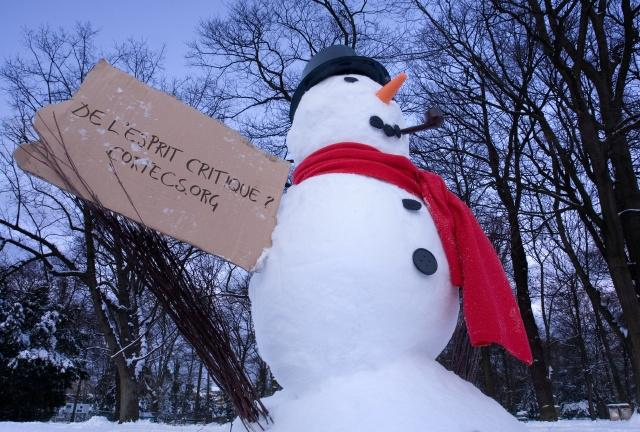 Cortex_bonhomme_de_neige