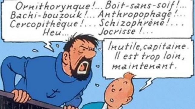 « Sale bête », « sale nègre », « sale gonzesse »  –  Identités, dominations et système des insultes, par Yves Bonnardel