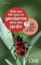 CorteX_Quae_gendarme
