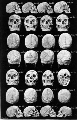 Rapport ostéopathie crânienne – réponses aux réactions – Collectif ... dcbe071f14c