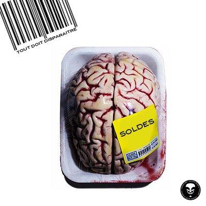 CorteX_cerveau_solde